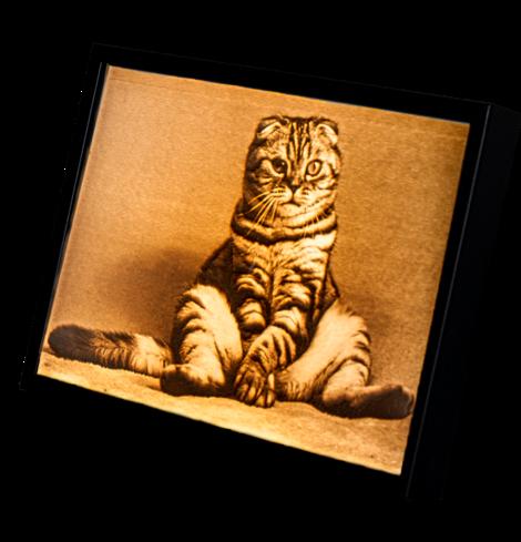 Produktfoto Lumitrast